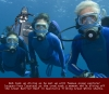 Diver Bob